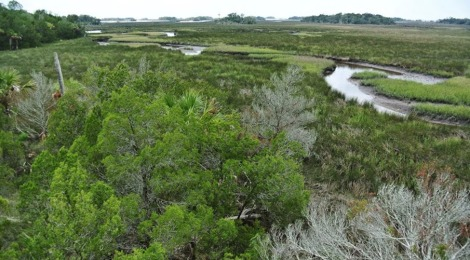Managing Coastal Change in the Cultural Landscape: A Case Study in Yankeetown and Inglis, Florida   Michael Volk, Kathryn Frank and Belinda B. Nettles
