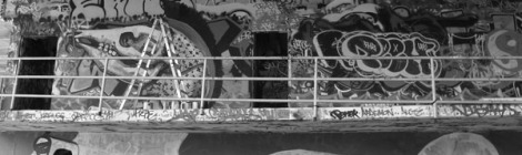 Vandalism (Miami Style) Graffiti as a Tool in Preserving the Marine Stadium | Rosa Lowinger