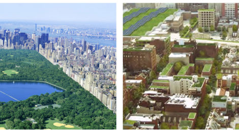 Greening Cities in an Urbanizing Age: The Human Health Bases in the Nineteenth and Early Twenty-first Centuries | Theodore S. Eisenman