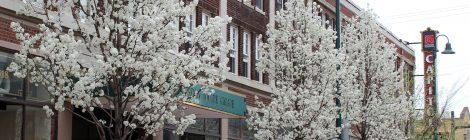 The Nexus of Arts and Preservation: A Case Study of Cleveland's Detroit Shoreway Community Development Organization | Stephanie Ryberg-Webster, Amanda Johnson Ashley